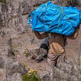 Porter on Kilimanjaro