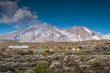 Shira Campsite, Kilimanjaro