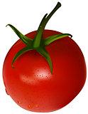 One cherry tomato
