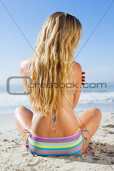 Gorgeous blonde in bikini sitting on the beach