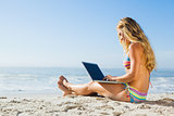 Gorgeous blonde in bikini using laptop on the beach