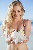 Pretty blonde in bikini holding conch on the beach