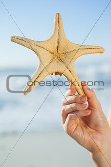 Woman holding starfish on the beach