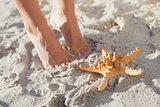 Woman standing beside starfish on the beach
