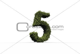 Five made of leaves