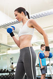 Fit brunette exercising with blue dumbbells