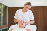 Peaceful brunette getting facial massage from beauty therapist