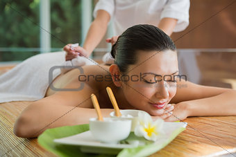 Smiling brunette getting a herbal compress massage