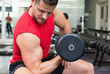 Handsome bodybuilder sitting on bench lifting dumbbell