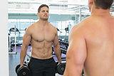 Shirtless bodybuilder lifting heavy black dumbbells looking in mirror