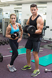 Muscular man and woman lifting dumbbells looking at camera