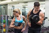Muscular man and woman lifting dumbbells together