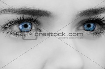 Blue eyes on grey face