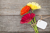 Three colorful gerbera flowers