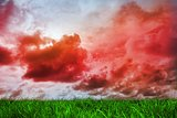 Green grass under red cloudy sky