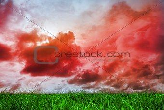 Green grass under red cloudy sky