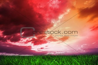 Green grass under red and purple sky