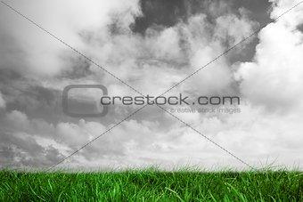 Green grass under grey sky