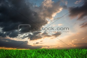 Green grass under blue and orange sky