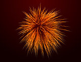 Orange fireworks on background