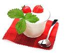 Joghurt mit Erdbeeren 2