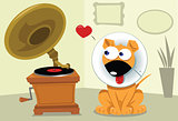 Funny Dog and Grammophone