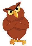 upset owl