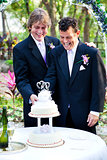 Grooms Cut the Wedding Cake