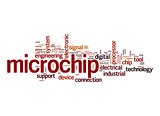 Microchip word cloud