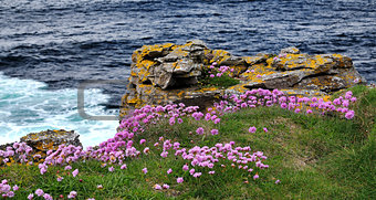 County Donegal coast