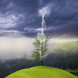 Tree on the hill struck by lightning from dark sky.