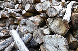 Dry chopped firewood logs stacked up in a pile