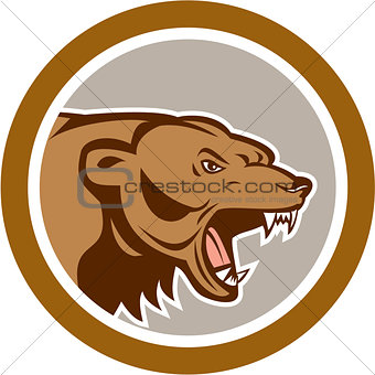 Angry Grizzly Bear Head Circle Cartoon