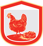 Hen Chicken Nest Egg Shield Retro