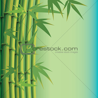 background with bamboo leaves and stems