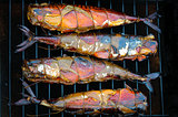 Smoked fish on grille in a smoker on black background