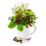bouquet of wild strawberry