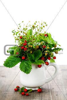 bouquet of wild strawberry