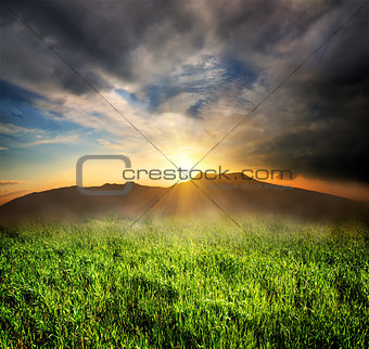 Green grass in mountains