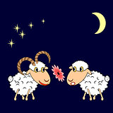 A ram presenting a sheep a flower