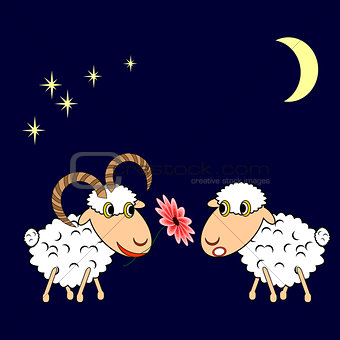 A ram presenting a sheep a flower