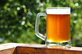 cold beer mug in sunny summer day