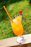 glass of orange tropical cocktail on green grass background