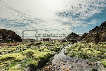 Beautiful seascape on low tide