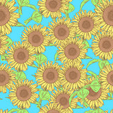 Sketch sunflower, vector vintage seamless pattern