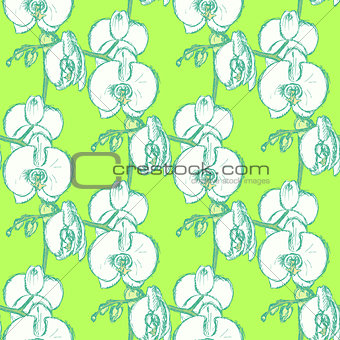 Sketch orchid, vector vintage seamless pattern