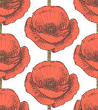 Sketch poppy, vector vintage seamless pattern