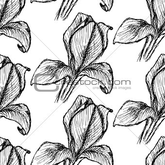 Sketch iris, vector vintage seamless pattern