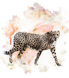 Watercolor Image Of Cheetah