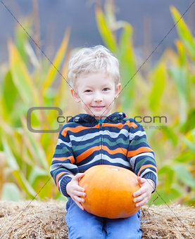 boy at pumpkin patch